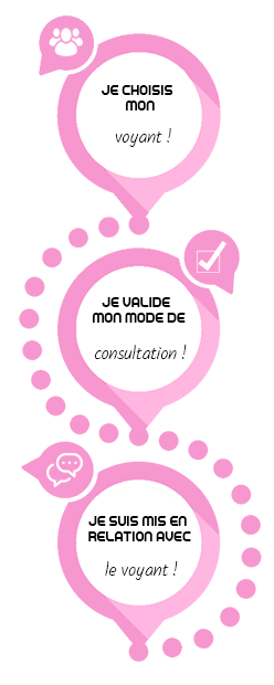 consulter voyant